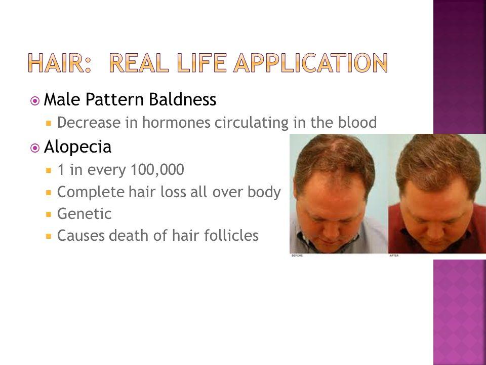 Hair: Real Life Application