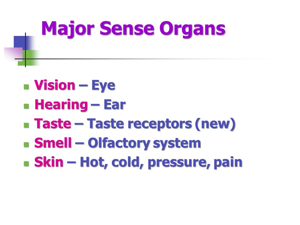 Major Sense Organs Vision – Eye Hearing – Ear