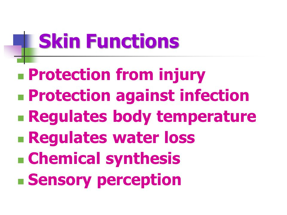 Skin Functions Protection from injury Protection against infection