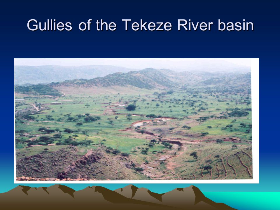 Gullies of the Tekeze River basin