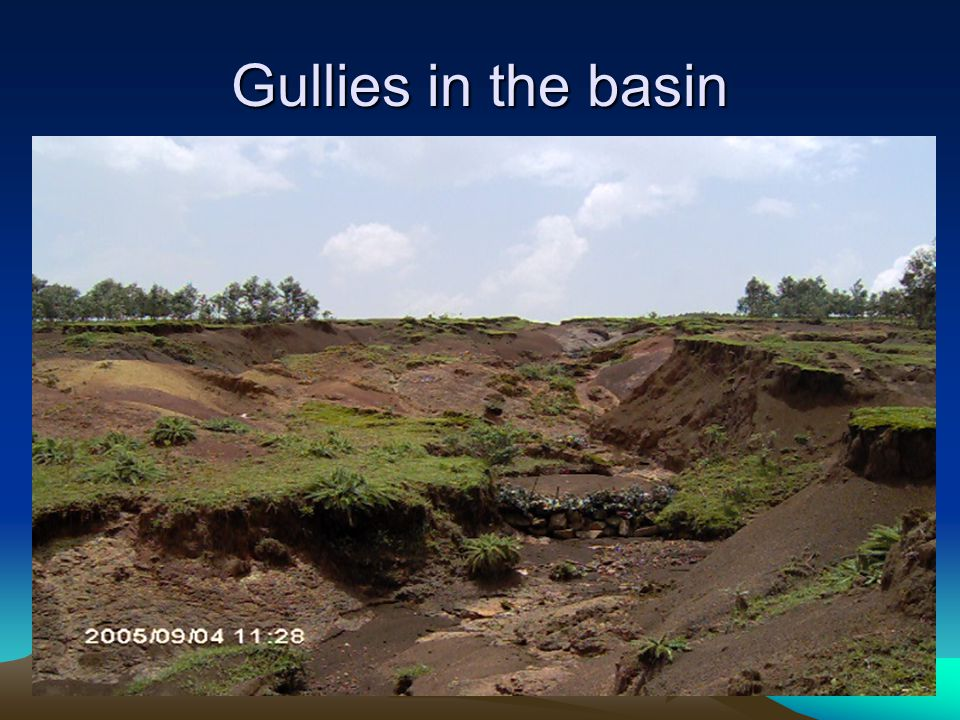 Gullies in the basin