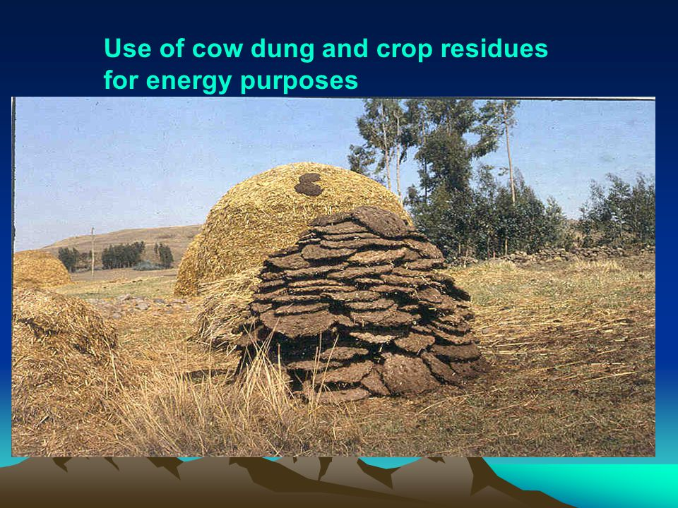 Use of cow dung and crop residues for energy purposes