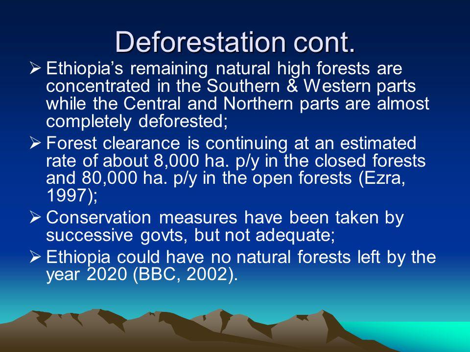 Deforestation cont.