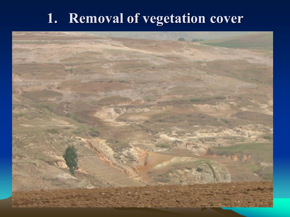 1. Removal of vegetation cover