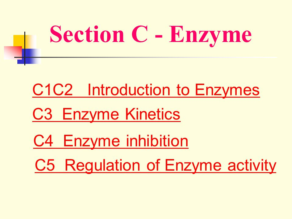 Section C - Enzyme C1C2 Introduction to Enzymes C3 Enzyme Kinetics