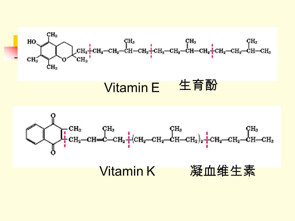 生育酚 Vitamin E Vitamin K 凝血维生素