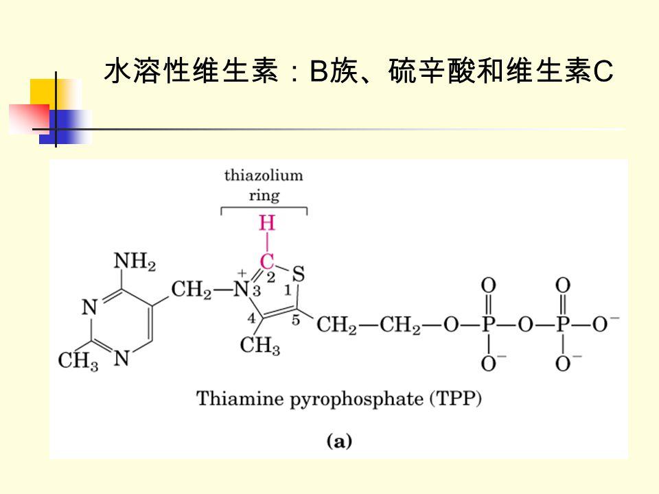 水溶性维生素:B族、硫辛酸和维生素C