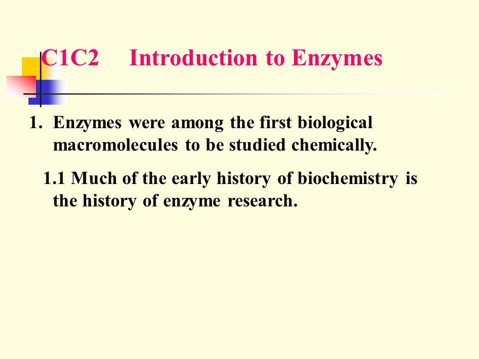 C1C2 Introduction to Enzymes