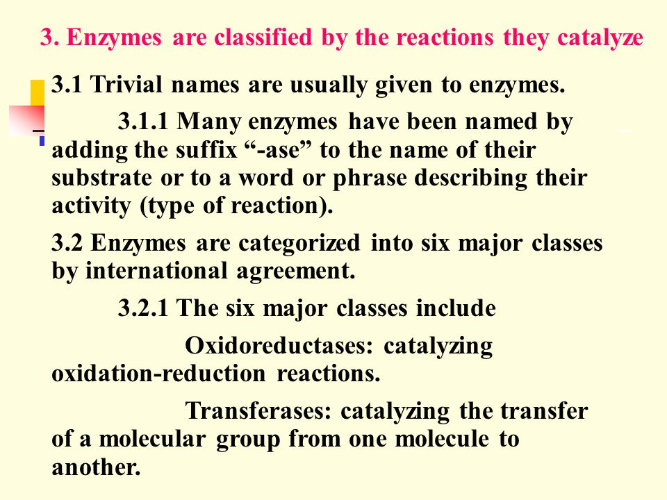 3. Enzymes are classified by the reactions they catalyze