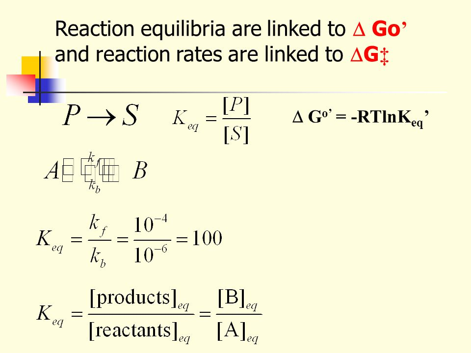Reaction equilibria are linked to  Go' and reaction rates are linked to G‡