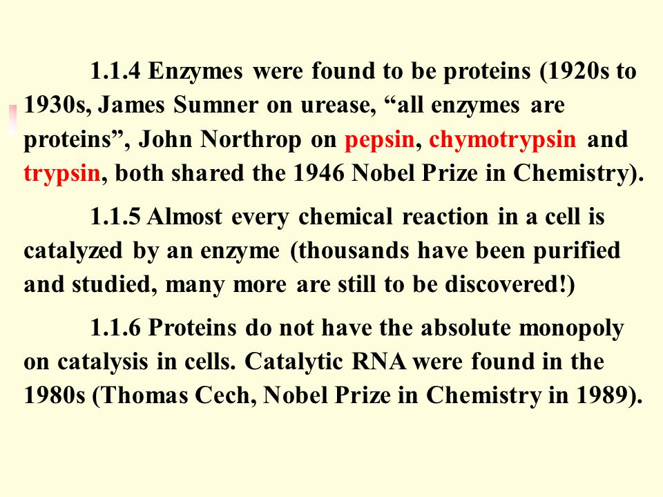1.1.4 Enzymes were found to be proteins (1920s to 1930s, James Sumner on urease, all enzymes are proteins , John Northrop on pepsin, chymotrypsin and trypsin, both shared the 1946 Nobel Prize in Chemistry).