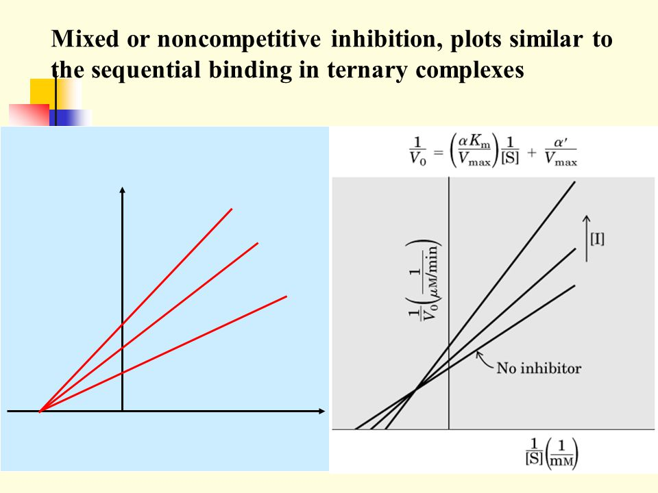 Mixed or noncompetitive inhibition, plots similar to