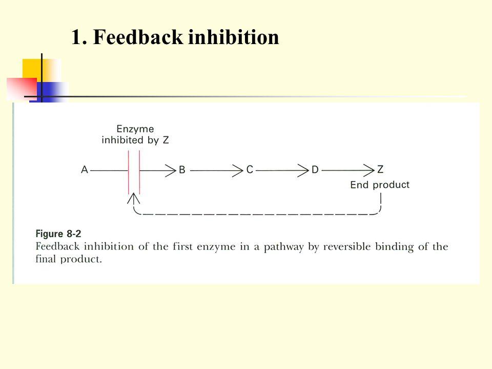 1. Feedback inhibition