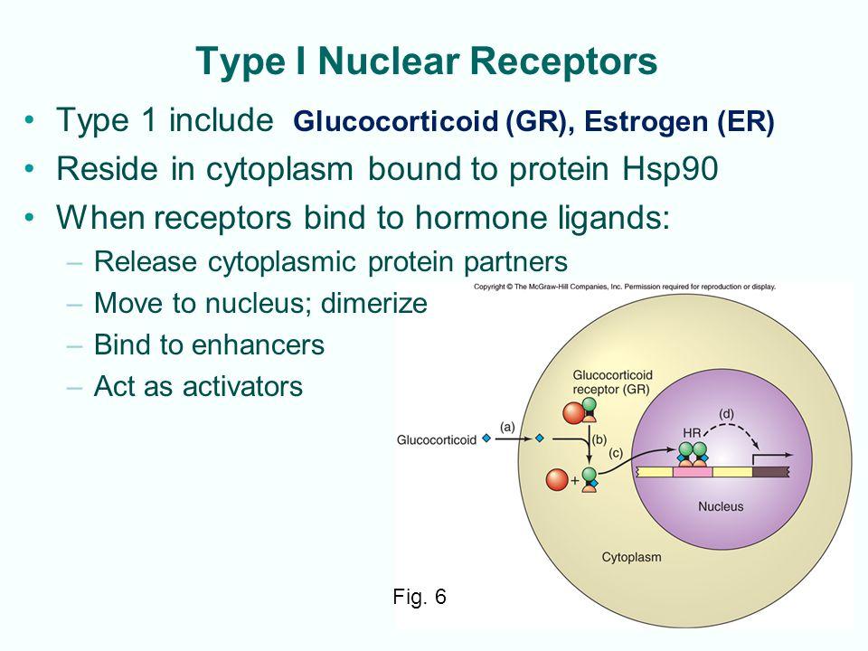Type I Nuclear Receptors