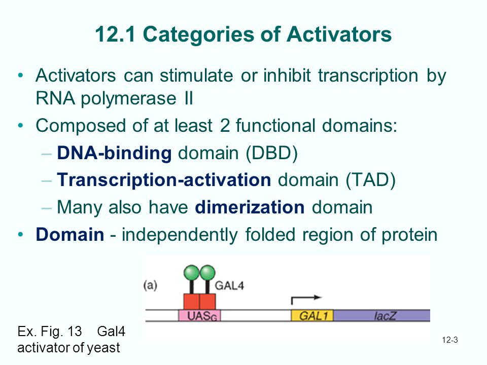 12.1 Categories of Activators