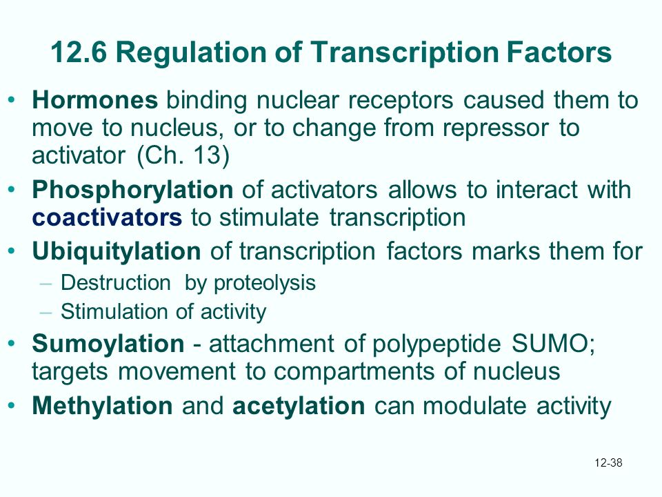 12.6 Regulation of Transcription Factors