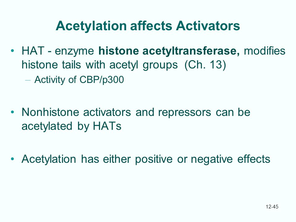 Acetylation affects Activators