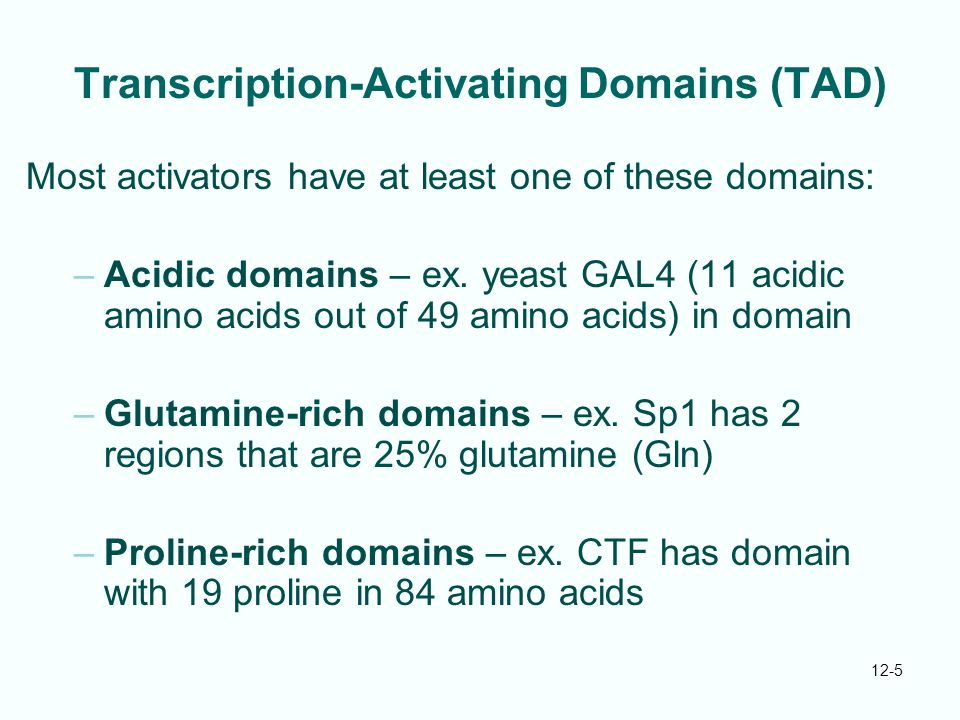 Transcription-Activating Domains (TAD)