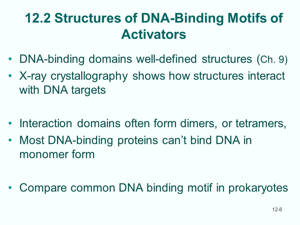 12.2 Structures of DNA-Binding Motifs of Activators