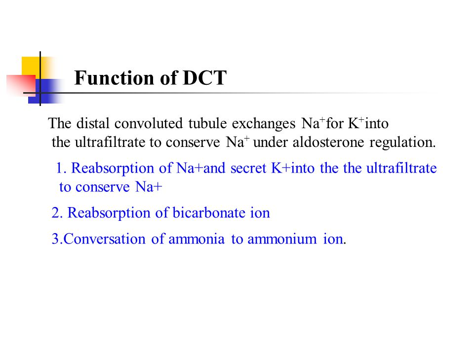 Function of DCT The distal convoluted tubule exchanges Na+for K+into