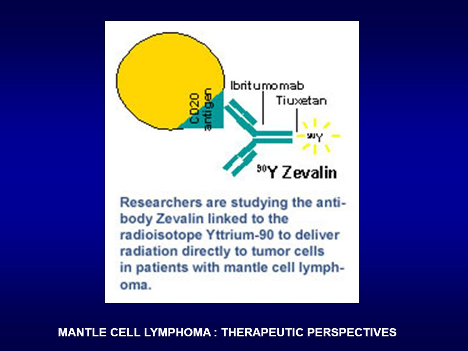 MANTLE CELL LYMPHOMA : THERAPEUTIC PERSPECTIVES