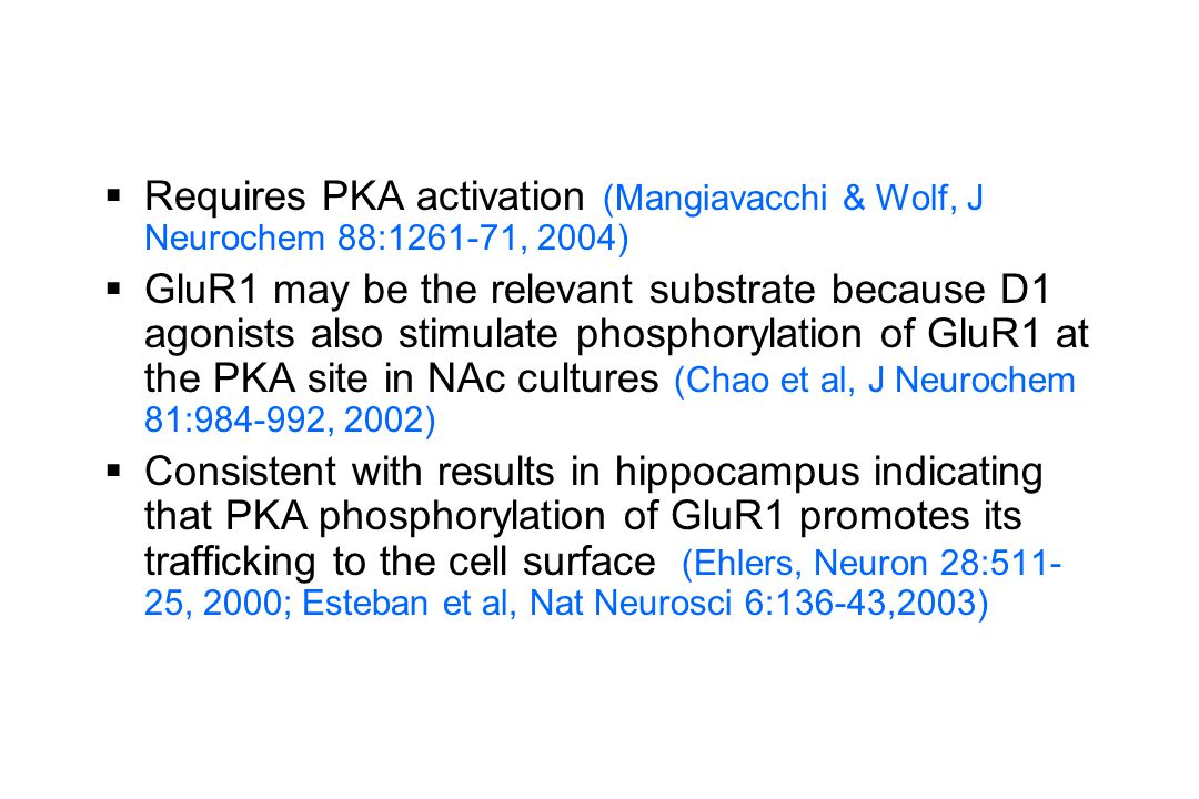 Requires PKA activation (Mangiavacchi & Wolf, J Neurochem 88:1261-71, 2004)