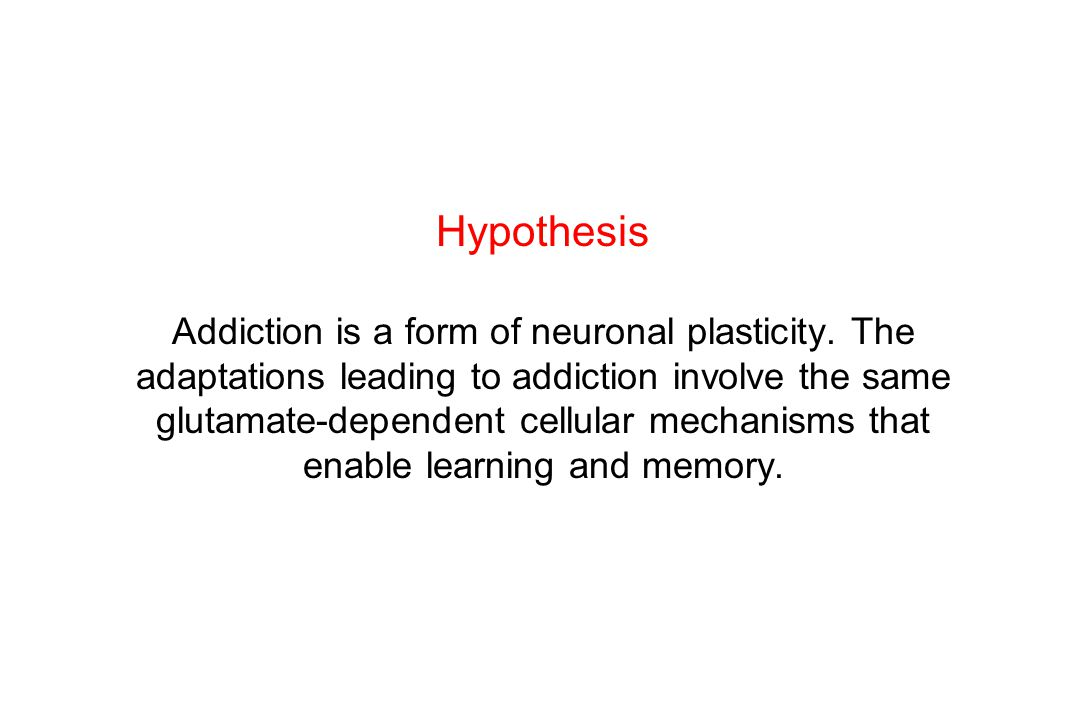 Hypothesis Addiction is a form of neuronal plasticity