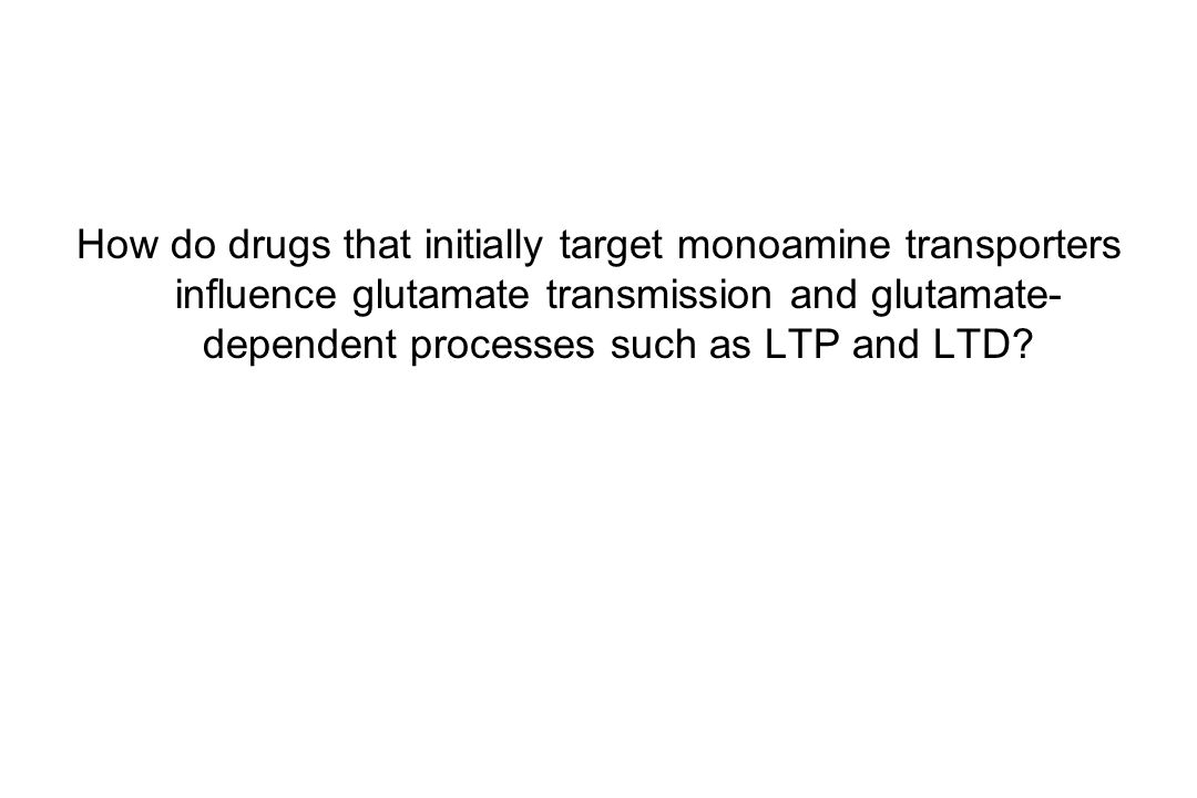 How do drugs that initially target monoamine transporters influence glutamate transmission and glutamate-dependent processes such as LTP and LTD