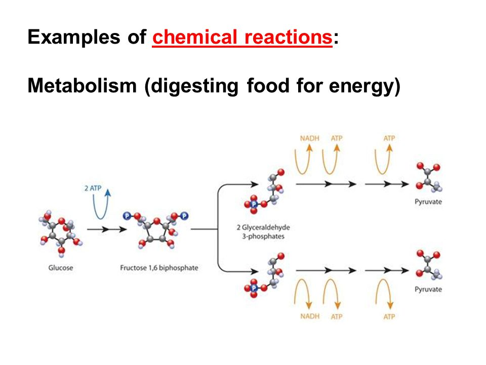 Examples of chemical reactions: Metabolism (digesting food for energy)