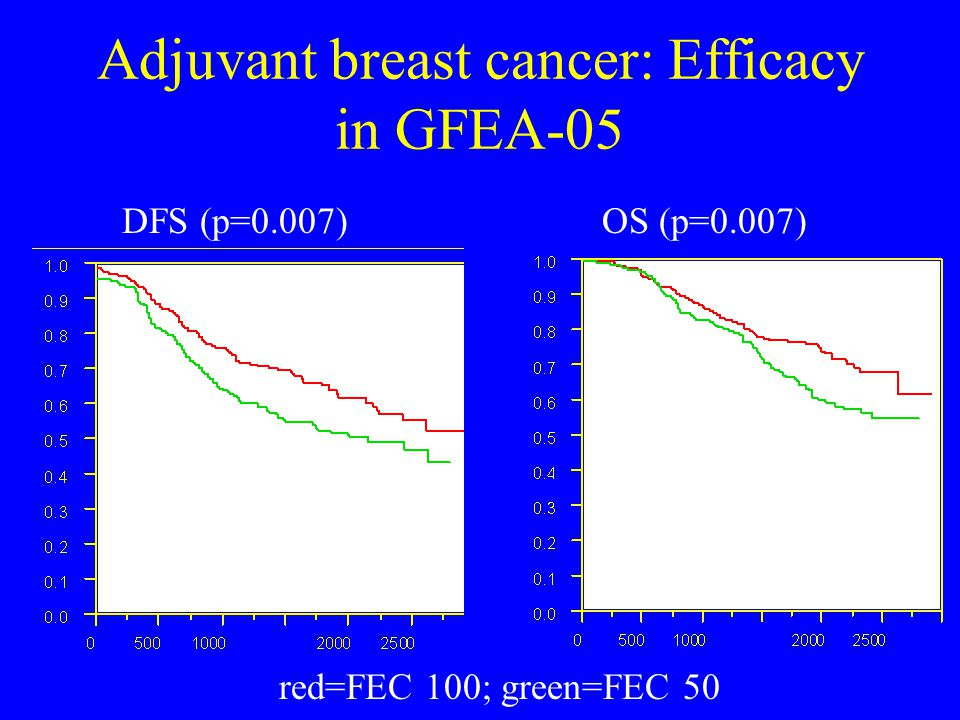 Adjuvant breast cancer: Efficacy in GFEA-05