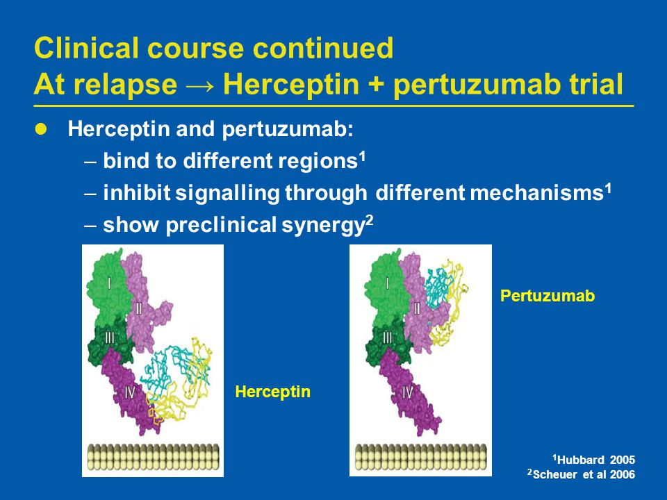Clinical course continued At relapse → Herceptin + pertuzumab trial