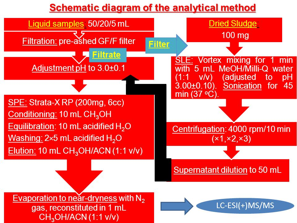 Schematic diagram of the analytical method