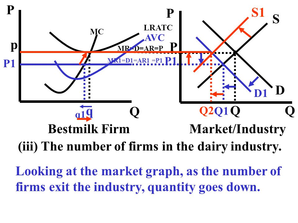 (iii) The number of firms in the dairy industry.