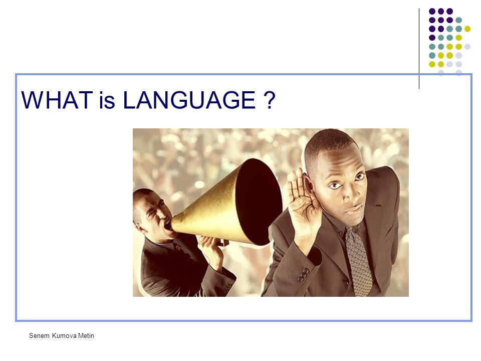 WHAT is LANGUAGE Senem Kumova Metin