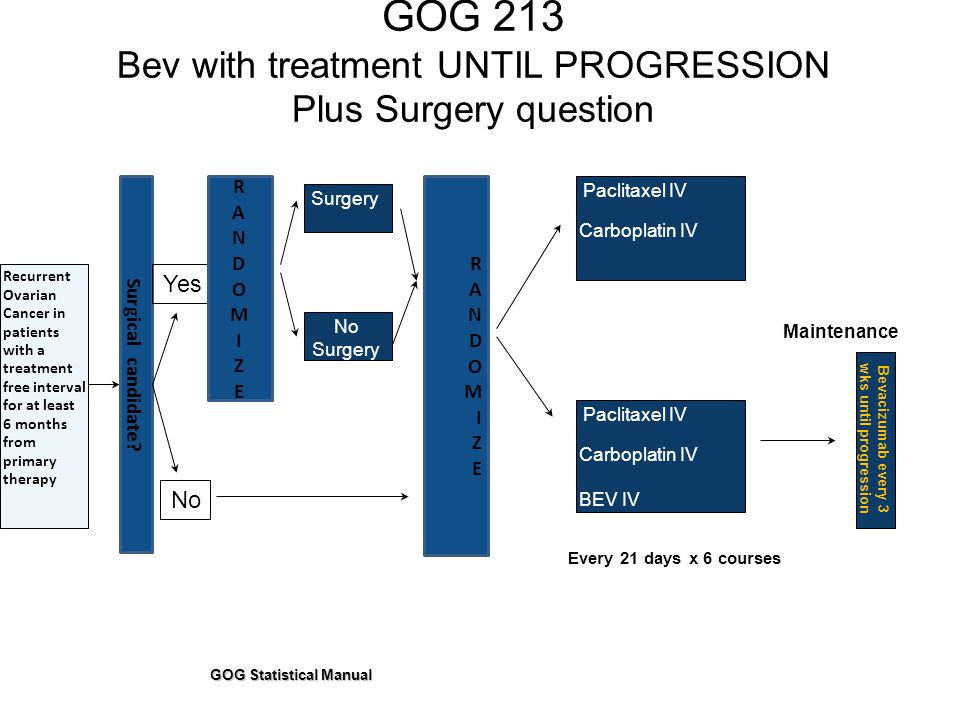 Bevacizumab every 3 wks until progression GOG Statistical Manual