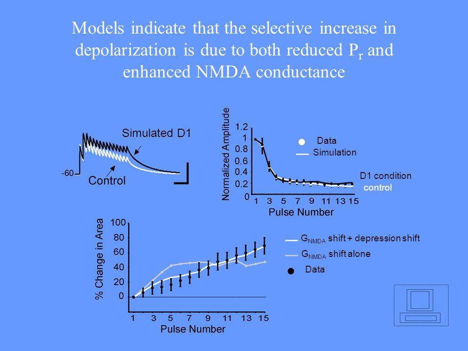 GNMDA shift + depression shift