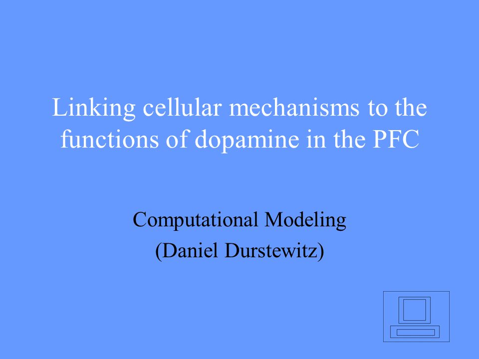 Linking cellular mechanisms to the functions of dopamine in the PFC