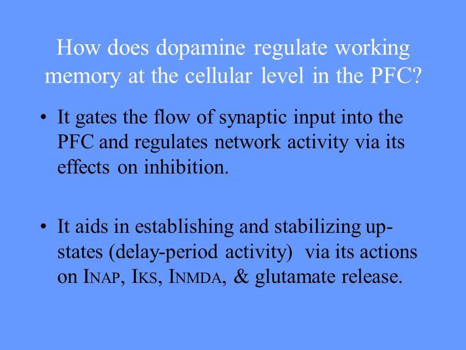 How does dopamine regulate working memory at the cellular level in the PFC