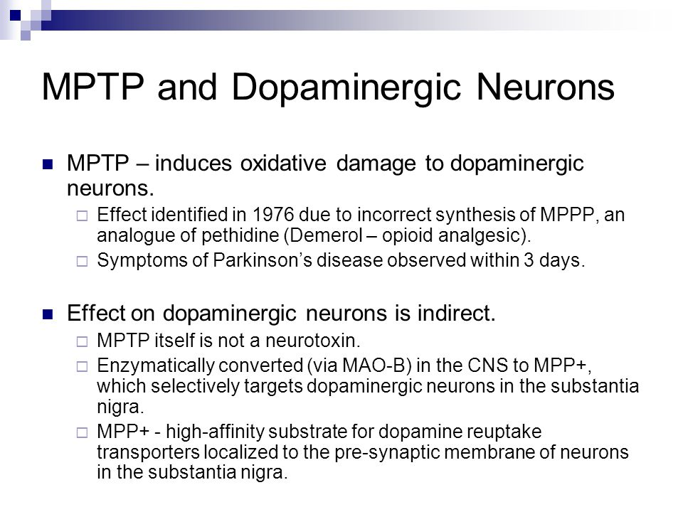 MPTP and Dopaminergic Neurons
