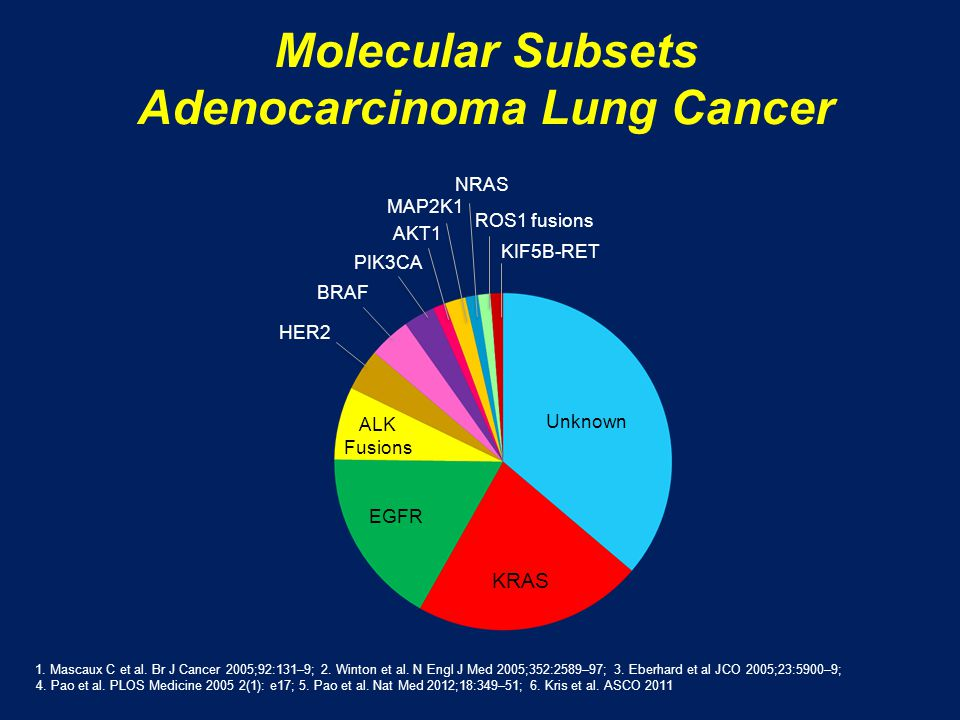 Molecular Subsets Adenocarcinoma Lung Cancer