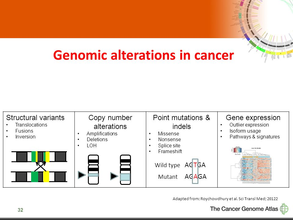 Copy number alterations Point mutations & indels Gene expression