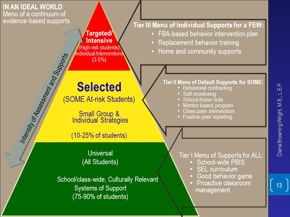 Selected (SOME At-risk Students) Small Group & Individual Strategies