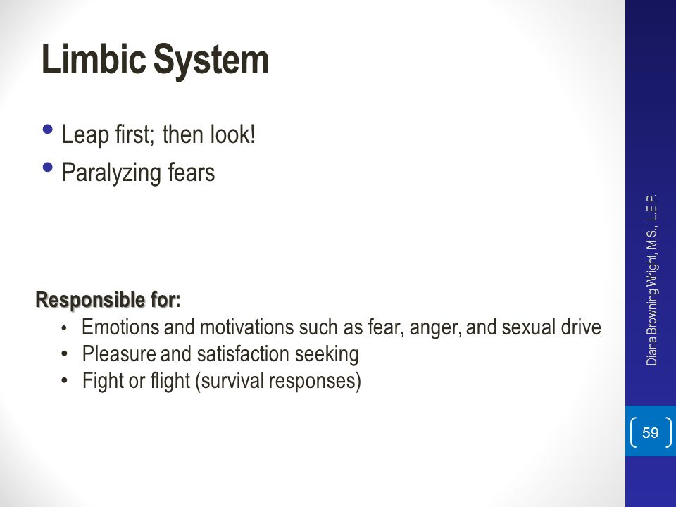 Limbic System Leap first; then look! Paralyzing fears Responsible for: