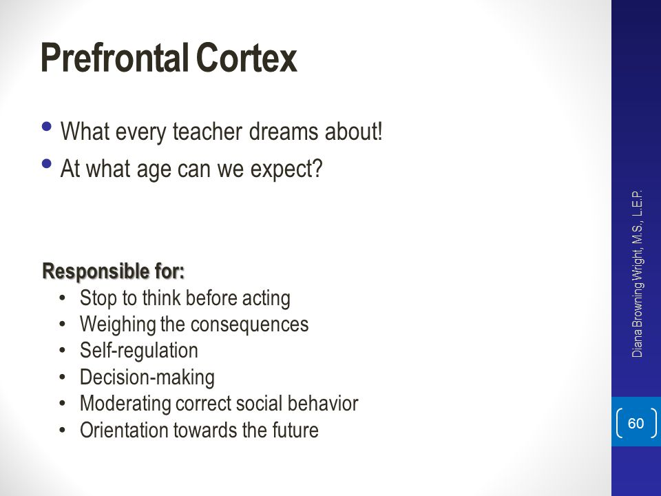 Prefrontal Cortex What every teacher dreams about!