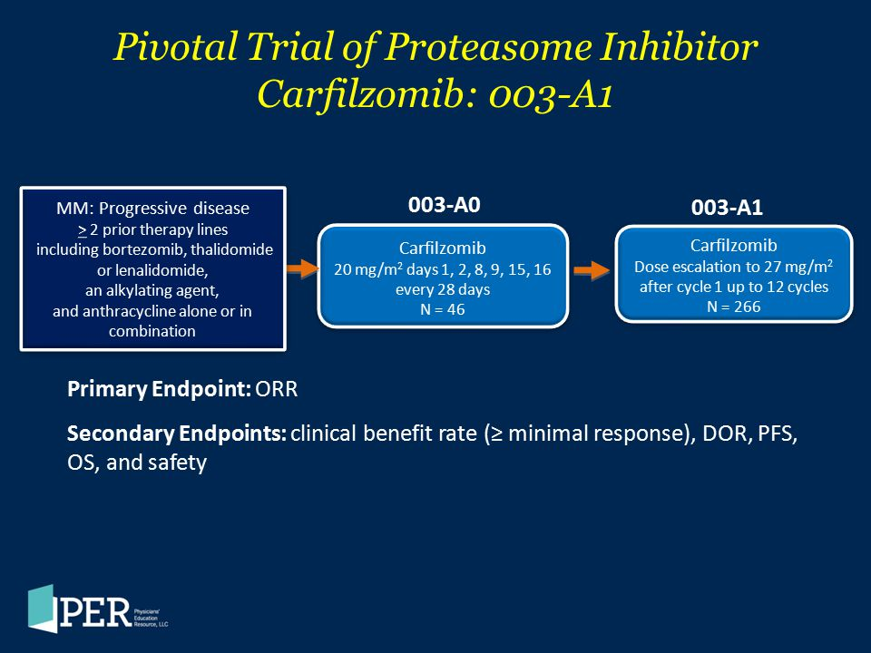 Pivotal Trial of Proteasome Inhibitor Carfilzomib: 003-A1