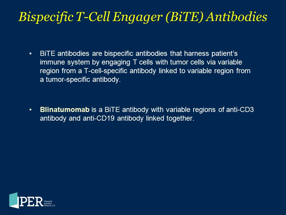 Bispecific T-Cell Engager (BiTE) Antibodies