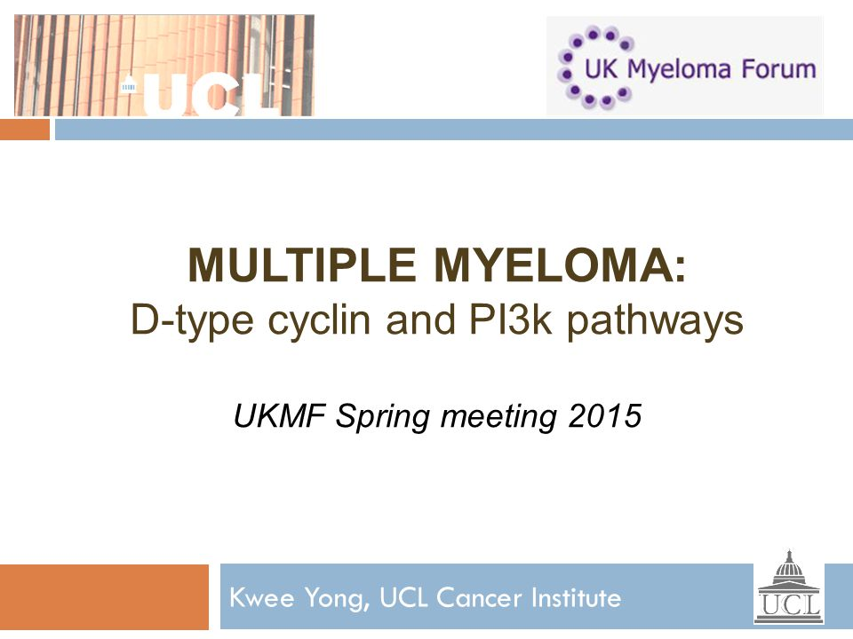 Kwee Yong, UCL Cancer Institute