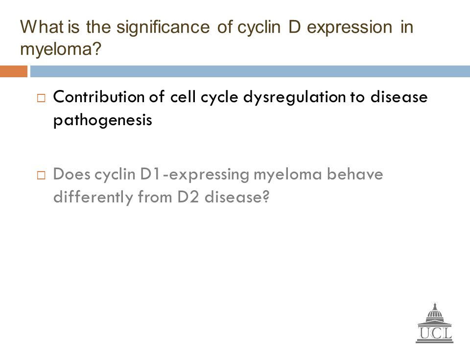 What is the significance of cyclin D expression in myeloma