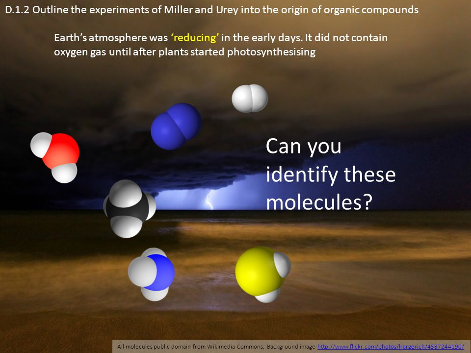 Can you identify these molecules