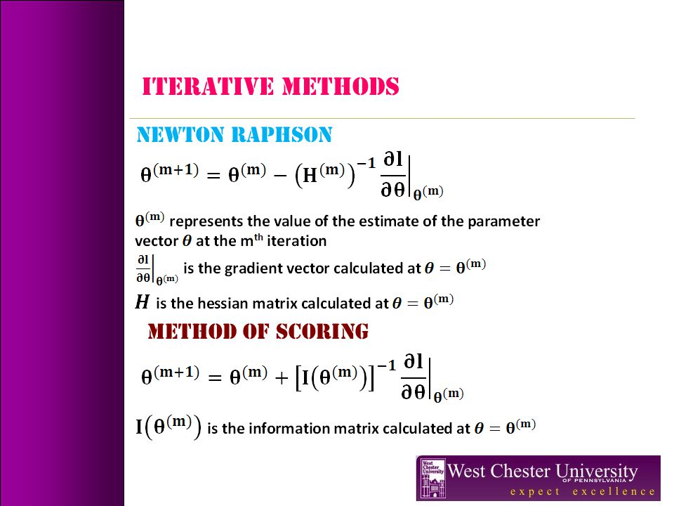 ITERATIVE METHODS NEWTON RAPHSON METHOD OF SCORING